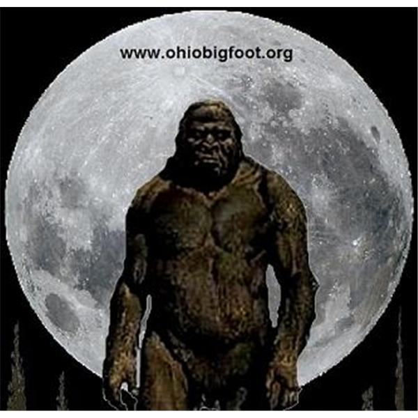 Ohio Bigfoot Radio
